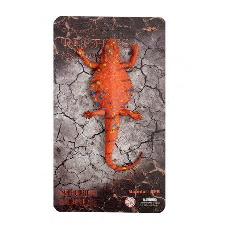 reptiles-pogona